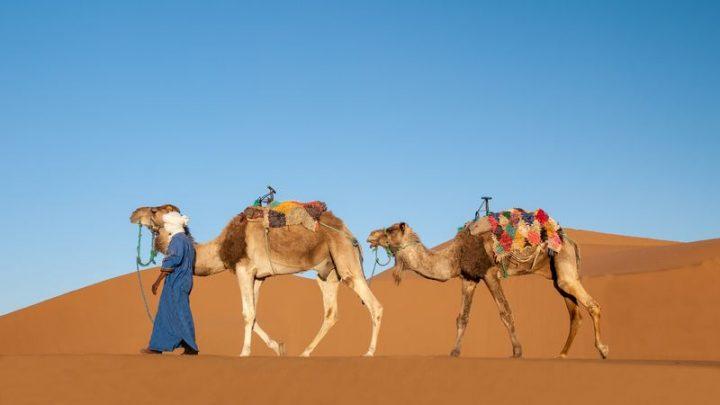 Que faire lors d'un voyage au Maroc ?